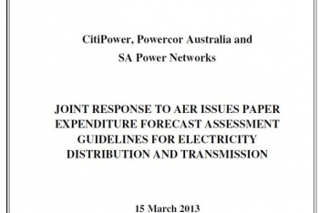 Review of Capital Expenditure Guidelines for Electricity Distributors, Australia